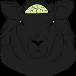 black sheep intelligence